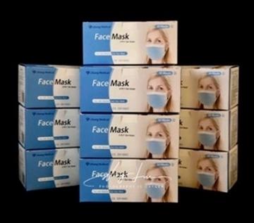 Bild von Schutzmasken Mundschutz Typ II - 10 Boxen à 50 Stk
